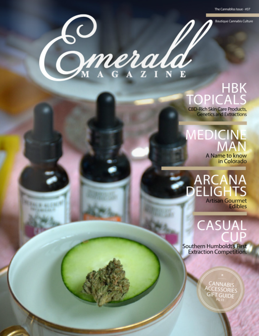 The Emerald Magazine by Christina DeGiovanni