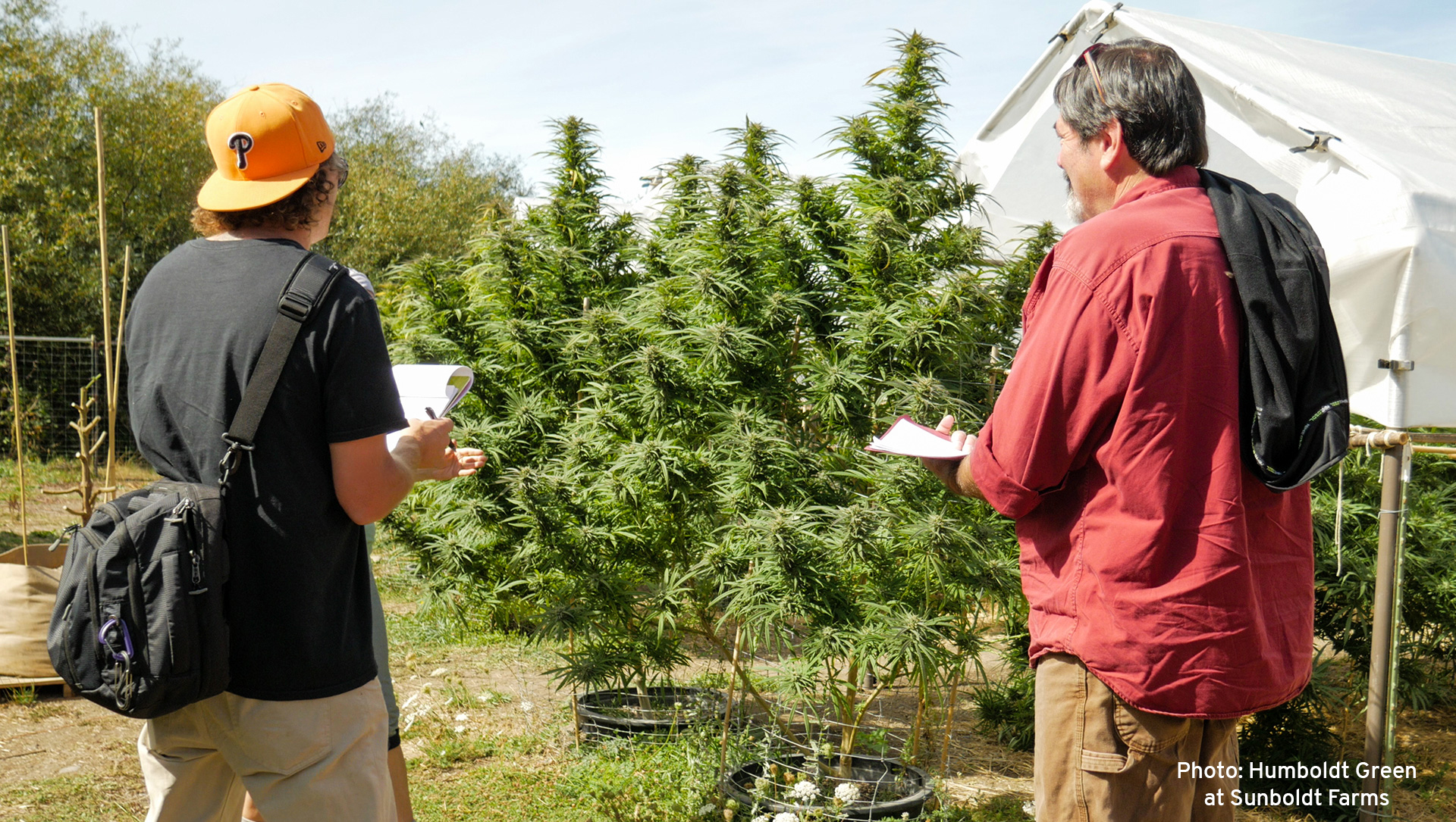 Stephen & Ken doing Care-Ability Standard Work regarding Cannabis Regulations at Sunboldt Farms